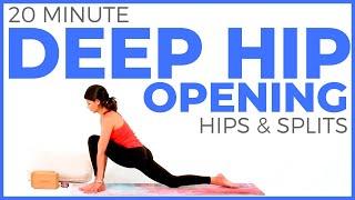 Hip Opening Yoga | Yoga for Flexibility HIPS & SPLITS (20 minutes)