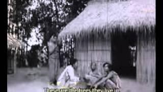 Surjo Dighal Bari সূর্য দীঘল বাড়ী