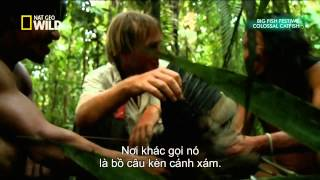 National Geographic Documentary - Colossal Catfish HD - Fishing Tv HD