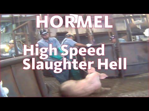 Hormel USDA Approved High Speed Slaughter Hell