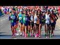 New York City Marathon 2019- Full Race
