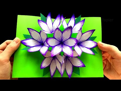 Xxx Mp4 Basteln Mit Papier DIY Blumen Pop Up Karten 3D DIY Geschenke Selber Machen 3gp Sex
