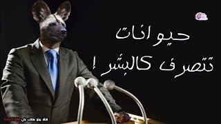 حيوانات تتصرف كالبشر  وربما اسوأ !! - الحيوان الأخير سيصدمك !