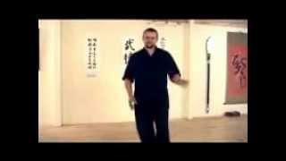 Drunken Kung Fu Lesson 1 : Basics (Jibengong) 基本功