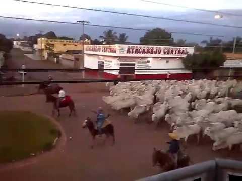 Cortando o estradão do Estado de Rondônia Comitiva WR Chupinguaia RO Atravessando o Município
