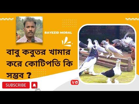 Pigeon keeping method-4 ঢাকার রবিউল ইসলাম ও জাকিরুল বাবুর কবুতর খামার করে কোটিপতি হওয়ার গল্প।