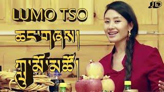 NEW TIBETAN SONG 2016 LUMO TSO CHANGSHEY