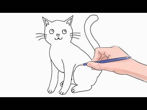 Xxx Mp4 How To Draw A Cat Easy Step By Step 3gp Sex