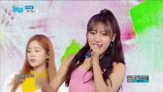【TVPP】Apink - FIVE, 에이핑크-파이브@Show Music Core Live