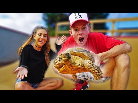 BUYING MY GIRLFRIEND A GIANT TORTOISE FREAK OUT