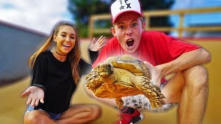 BUYING MY GIRLFRIEND A GIANT TORTOISE! *FREAK OUT*
