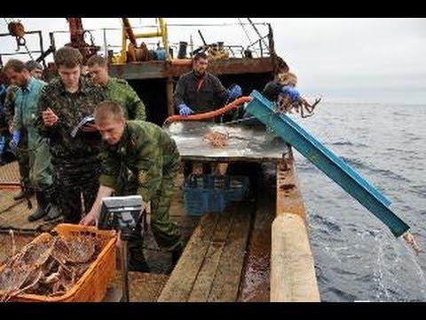 рыбалка пираты видео