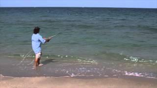 Mullet Run 2012 Fly Fishing Snook