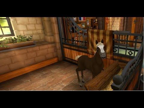 Xxx Mp4 Horse Haven World Adventures 294 Die Fjordi Schwarzwälder Zucht Beginnt German Deutsch 3gp Sex