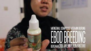 Mengenal Ebod Breeding bersama Drh. Wenny Rumantiwi (Vitamin Burung)