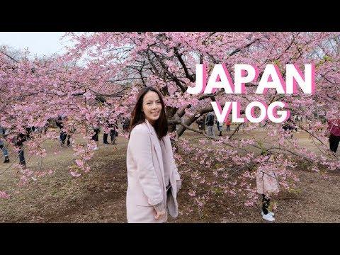 Xxx Mp4 JAPAN VLOG Cherry Blossoms Favorite Restaurants Andi Manzano Reyes 3gp Sex