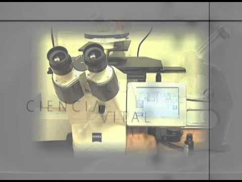 Ciencia Vital - Temporada 01 - Microscopio Confocal  01/03