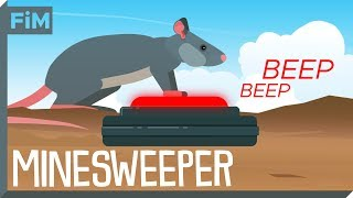 We use Rats to clear Minefields - Here