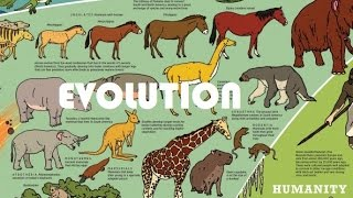 Evolutionary history of life on Earth in 5 minutes