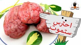 هل تعلم ماذا يحدث لجسمك بعد أكل مخ الخروف والبقر ؟