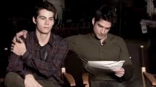 obrosey  brother let me be your shelter
