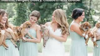 Wedding Party Ditches Flowers for Puppies