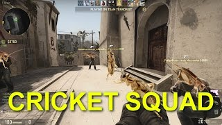 CS:GO - Cricket Squad