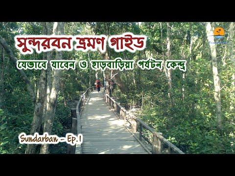 Xxx Mp4 সুন্দরবন । Largest Mangrove Forest In The World । Way To Go । Harbaria । Sundarban Part 1 । Khulna 3gp Sex