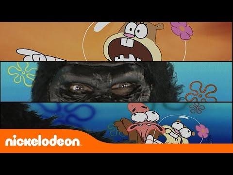 Gorila Solto Bob Esponja