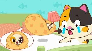 ★NEW★貓咪爸爸照顧小貓咪睡覺,小貓咪不見了,快來幫忙找找小貓咪 | 過家家兒歌 | 童謠 | 動畫 | 卡通 | 寶寶巴士 | 奇奇 | 妙妙