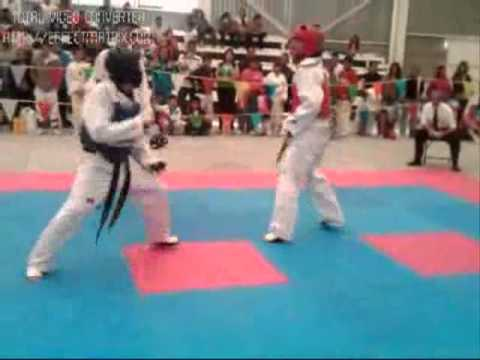 taekwondo combate cintas negras