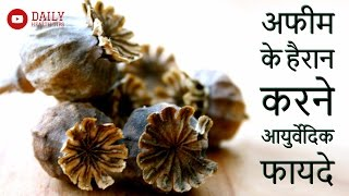 अफीम के हैरान करने वाले आयुर्वेदिक फायदे आपको चौंका देंगे | Ayurvedic advantages of Opium (Afeem)