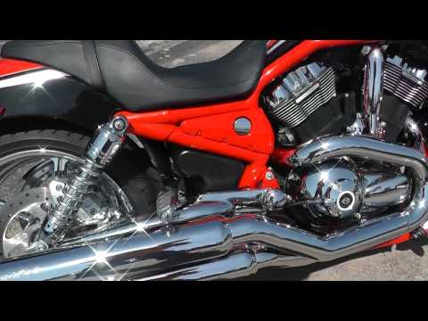 975149 - 2006 Harley Davidson Screamin' Eagle V Rod CVO - Used Motorcycle For Sale