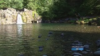 Teen pulled from water at Salmon Falls Park dies