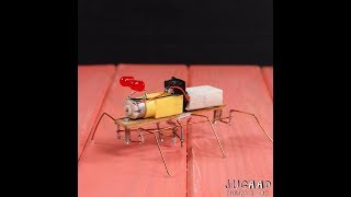 How to Make your own Walking Insect Robot