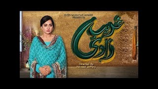 Ghareeb Zaadi Teaser 04 -  Coming soon on Aplus