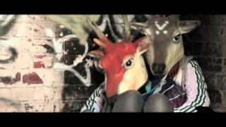 Morain - Animals