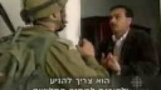 daily Israeli crimes