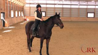 Riding a Lazy Horse