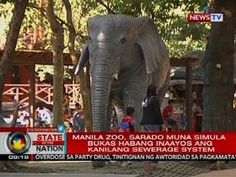 Xxx Mp4 Manila Zoo Sarado Mula Simula Bukas Hanggang Inaayos Ang Kanilang Sewerage System 3gp Sex