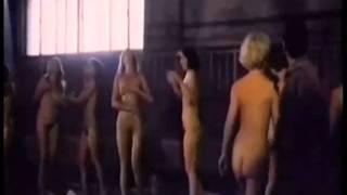 La Raccolta dei Fori Selvatici (1979)