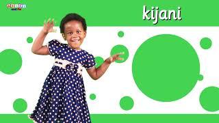 Nyimbo Bora za Akili and Me   Katuni za Elimu kwa Kiswahili