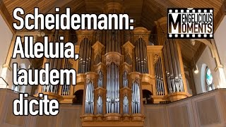 Heinrich Scheidemann: Alleluia, laudem dicite - Olga Minkina, organ