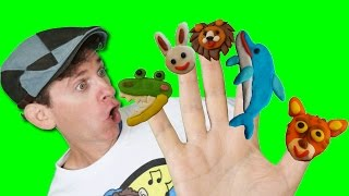 Finger Family Song - Wild Animals with Matt | Action Song, Nursery Rhyme | Learn English Kids