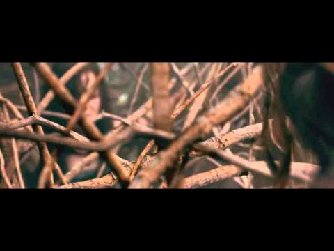 Xxx Mp4 Evil Dead 2013 Tree Rape Scene 3gp Sex