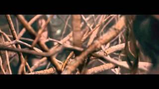 Evil Dead (2013) - Tree Rape scene