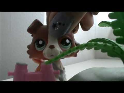 Xxx Mp4 Littlest Pet Shop A School Girl S Life Episode 5 Mistakes 3gp Sex