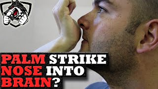 Can A Palm Strike to the Nose Kill You?