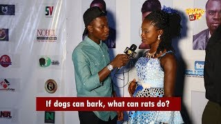 If Dogs Can Bark, What Can Rats Do?   KraksTV Funny Viral Vox Pop