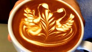 IKECCI'S Latte Art
